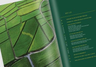 Thiết kế báo cáo thường niên cho ngân hàng Agribank